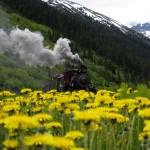 #69 Steam Engine by Clarissa Clark