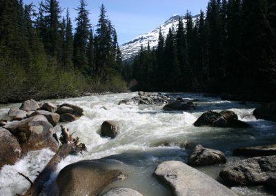 LG-river-stop