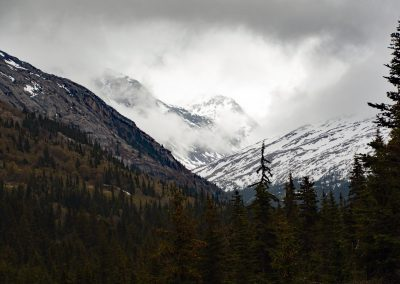 On the Way to White Pass