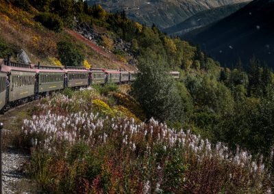 Trackside through the White Pass fire weeds