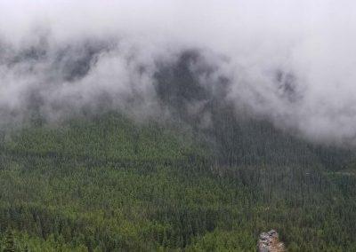 White Pass Landscape